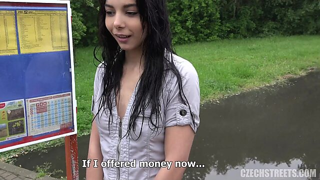 Young Brunette Silvia Fucked for Money in Forest