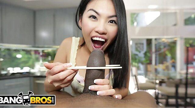 Japan cock